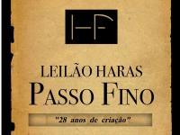 Leilão Haras Passo Fino -