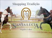 Shopping Tradição Santa Lúcia
