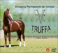 1º Shopping Permanente Haras do Truffa