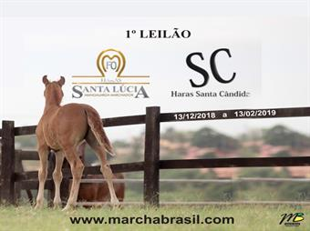 1º Leilão Oportunidades Haras Santa Lúcia e Santa Cândida